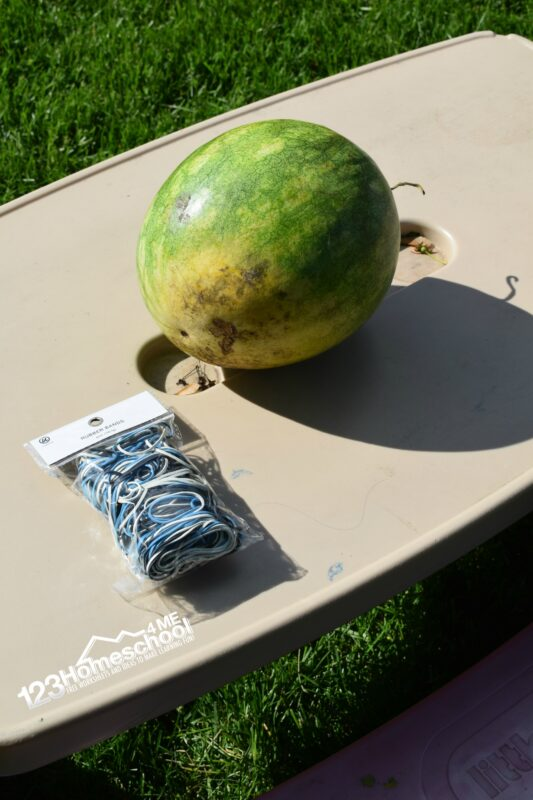 Simple and fun watermelon science project to add to your summer bucket list