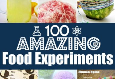 Over 100 Food Science experiments for preschool, kindergarten, first grade, 2nd grade, 3rd grade, 4th grade, 5th grade, and 6th graders to make science FUN!
