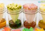 leaf science activities for preschoolers