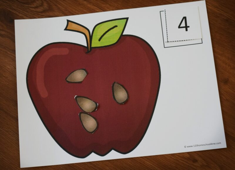 Fun fall themed math activity to help preschoolers and kindergartners practice how to count to 20 with an apple theme activity