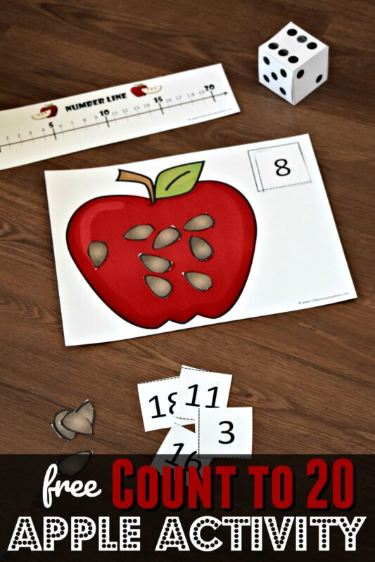 Kids will have fun practicing counting with this fun, hands on apple seed counting activity. These apple count to 20 mats are the perfect math activity for preschool, toddler, pre k, and kindergarten age students for an apple theme or A is for apple week in September.