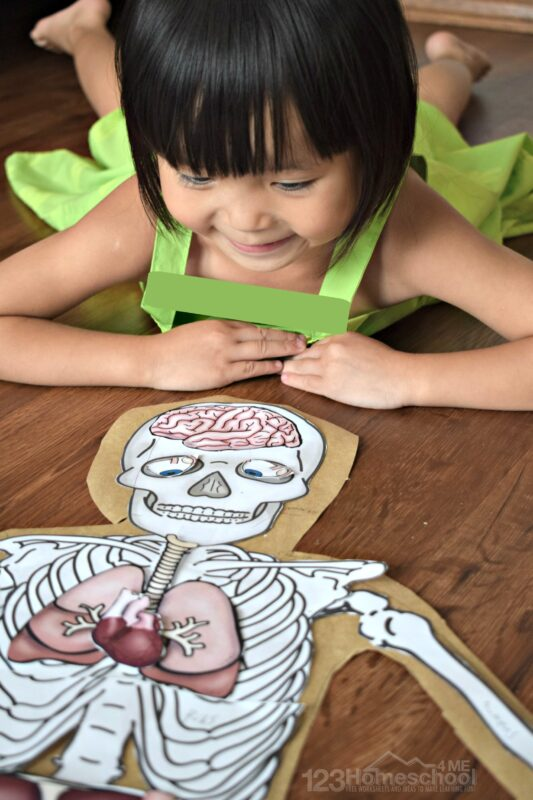 this is such a fun human body activity for preschool, prek, kindergarten, first grade, 2nd grade, 3rd grade, 4th grade, 5th grade, and 6th grade students