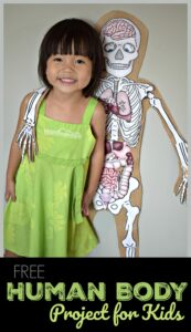 this outrageously FUN human body preschool project using free printables allows kids to learn about what is inside my body
