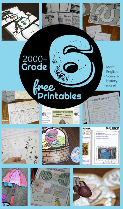 FREE 6th Grade Worksheets