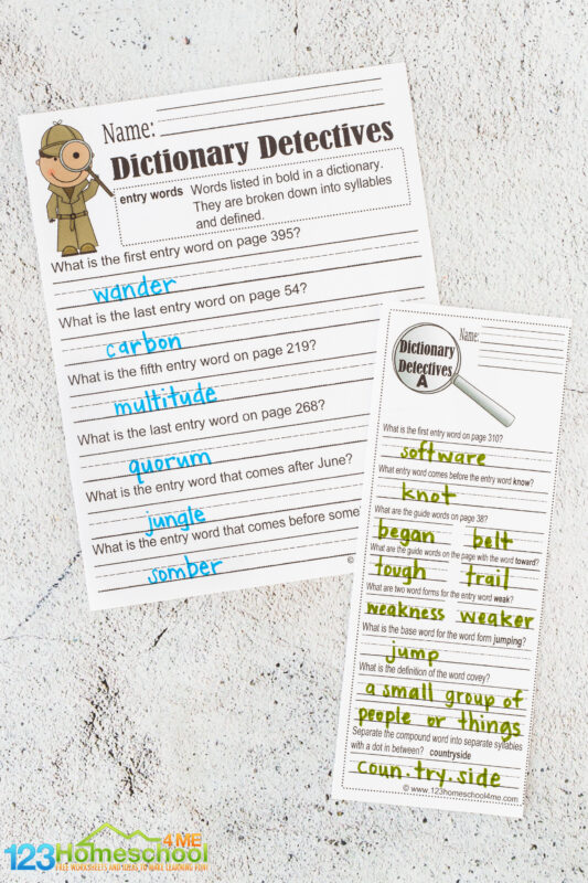 dictionary practice worksheets
