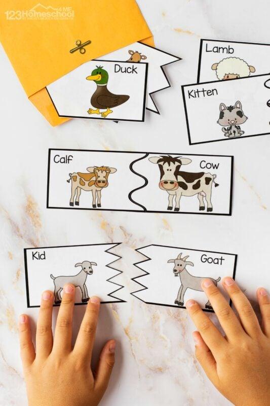 Baby animals activities printables