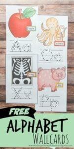 alphabet wallcards