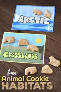 Animal Habitats Activity with Animal Cookies