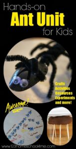 ant activities for kids