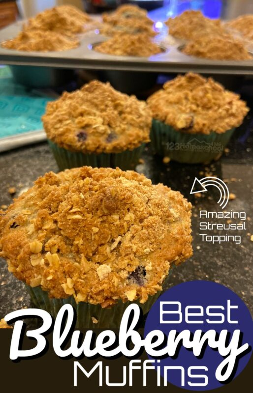 If you are looking for thebest blueberry muffins, this is the recipe you've been searching for. It is easy, bursting with delicoius blueberry flavor, and has the most amazing topping - your taste buds will be dancing for joy at this yummy breakfast recipe! I could just eat the rich streussal topping on theblueberry muffin tops by themselves for breakfast! So try thisblueberry recipe for a yummy blueberry muffin your whole family will love!