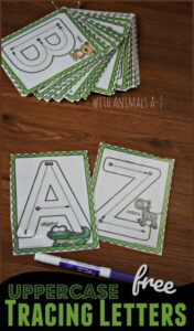 uppercase letter cards