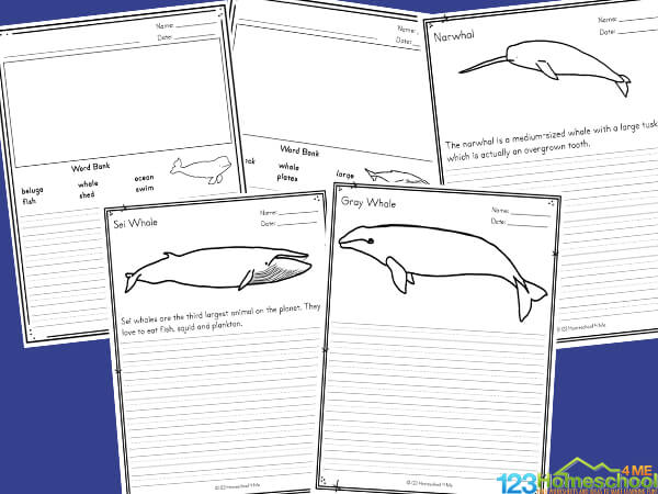 these super cute, free printable, Creative Writing Ideas will encourage elementary age students to write more!