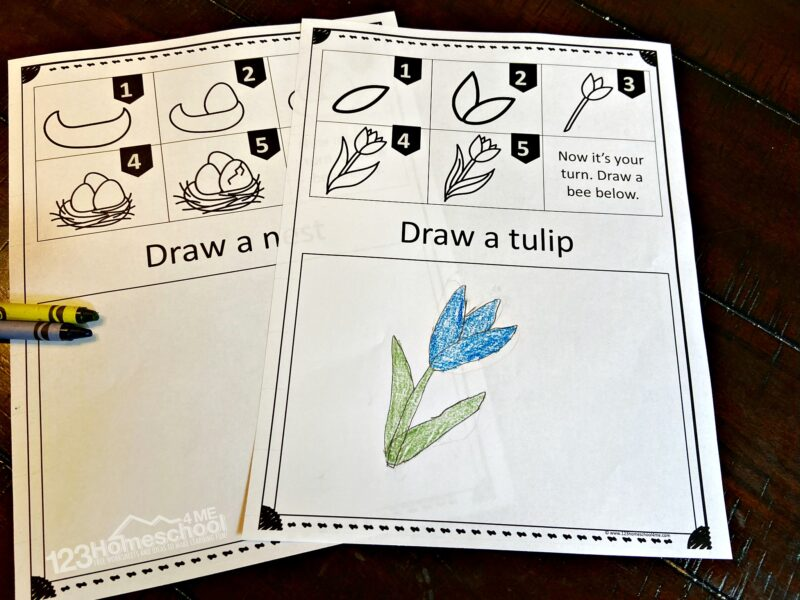 Learn to draw for kids with these free printable worksheets. Pictured is a pretty, blue spring tulip flower