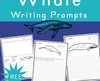 free printable ocean whale writing prompts for kindergarten, first grade, 2nd grade, 3rd grade, 4th grade, 5th grade, and 6th grade students