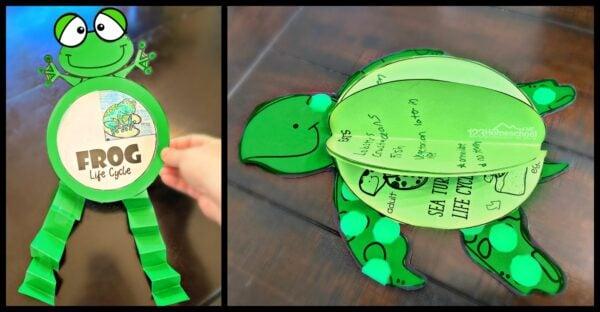 printable frog craft and printable sea turtle craft
