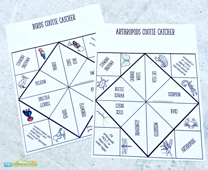free Animal Classification Games to print in black and white or color to play and learn with elementary age students