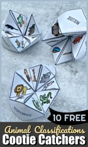 Animal Classifications for Kids Cootie Catchers