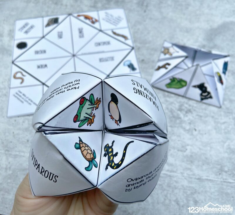 Grab these 10 free printable cootie catcher templates to make learning about science classifications fun with a game!
