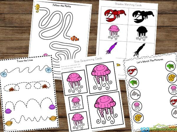 Ocean worksheets for preschoolers