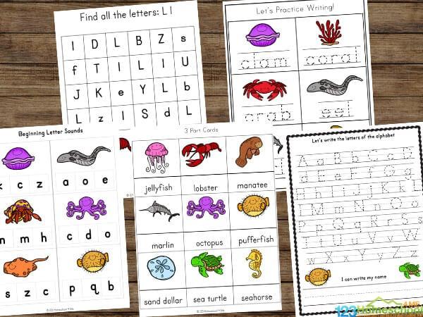 super cute ocean printables for kindergarten, grade 1 and grade 2 students