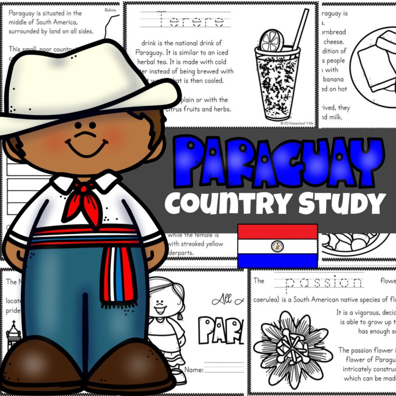 Paraguay Country Study