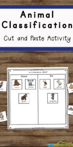 FREE Animal Classification Worksheets - a great way for children of all ages to practice and improve their knowledge of animals as well as work on their fine motor skills as they cut and paste the animals into the correct columns. This is such a fun science worksheet for kids from first grade, 2nd grade, 3rd grade, 4th grade, 5th grade, and 6th grade students to use with parents, teachers, and homeschoolers.
