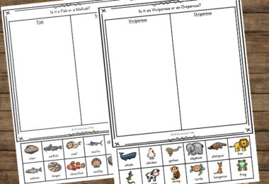 Classifying Animals Worksheet