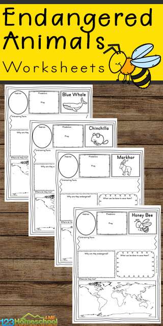 Free Endangered Animals Worksheets for kindergarten, first grade, 2nd grade, 3rd grade, 4th grade, 5th grade and 6th grade students. Animal report form template for learning about endangered animals