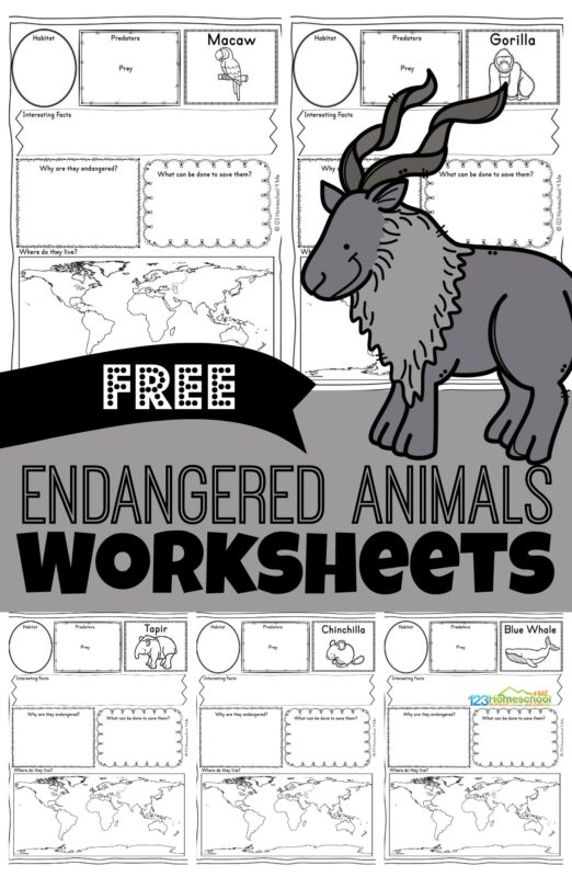 Children will love learning about these fascinating animals from around the world that are sadly endangered animals. Grab these free printableEndangered Animals Worksheets for kindergarten, first grade, 2nd grade, 3rd grade, 4th grade, 5th grade, and 6th grade students to make learning about animals fun and easy!