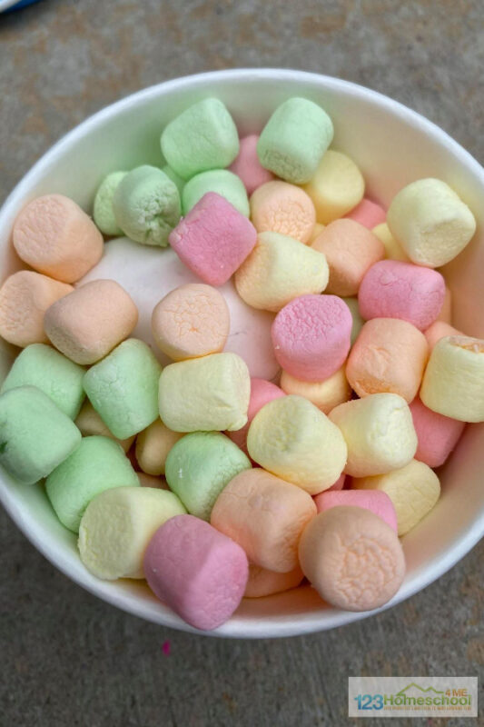 Marshmallow science project