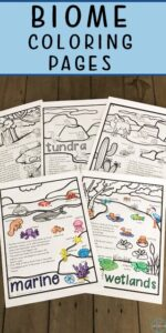 biomes coloring pages