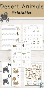desert animals themed worksheets for pre k, kindergarten, and grade 1