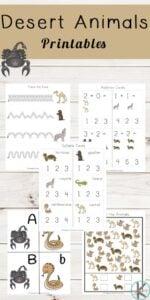 desert animals themed worksheets for pre k, kindergarten, and grade 1