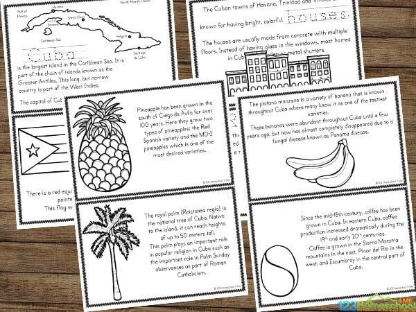 Learn about Cuba mini book