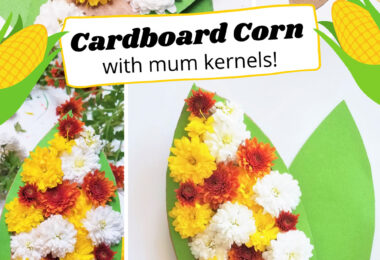 Kids will love making these beautiful and truly uniqueCorn Crafts using mum flowers and cardboard. Thiscorn craft for kids makes a lovely decoration for fall, Thanksgiving, or any time of the year. Plus, this is such an easy corn crafts for preschool, pre-k, toddler, kindergarten, first grade, and 2nd grade students.