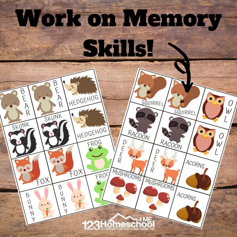 Memory game animals