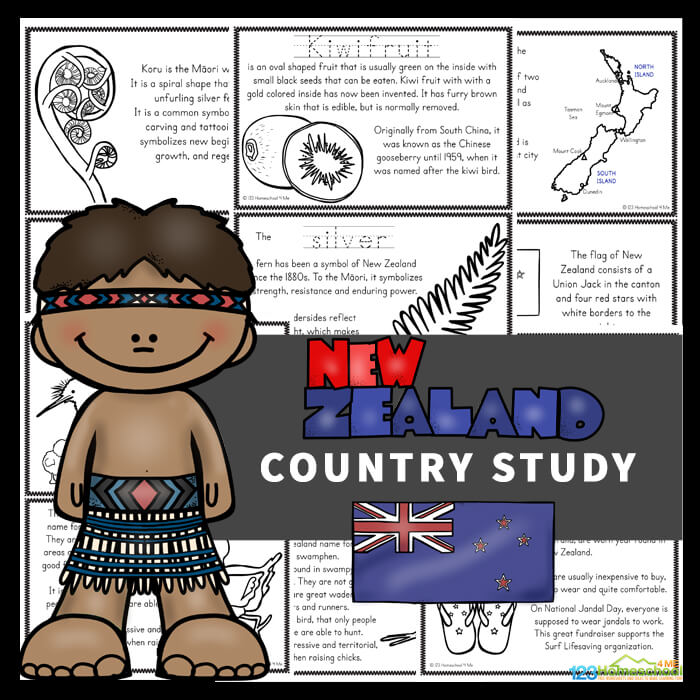 New-Zealand-Country-Study-1