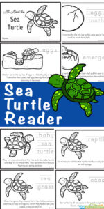 Are your kids fascinated by sea turtles? These large, graceful reptiles are truly amazing! Learn lots of facts aboutsea turtles for kids in these free printable sea turtle readers filled with lots of information, facts, and the Sea turtles life cycle.Download pdf file and print so children can color, read, and learn about the life cycle of a turtle. This is a great science printable for preschool, pre-k, kindergarten, first grade, 2nd grade, 3rd grade, 4th grade, 5th grade, and 6th grade students.