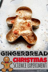 Fizzy Gingerbread Man Christmas Science Experiment was a huge hit! Children from toddler, preschool, pre-k, kindergarten, to first grade students will enjoy thisChristmas Science Activitiesperfect for making learning fun in December.