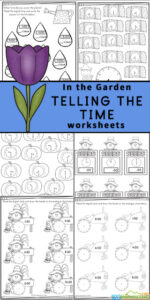 Introduce children in pre-k, preschool, kindergarten, first grade, and 2nd grade to learning to read a clock with these fun Garden themed Telling the Time Worksheets. Concentrating on learning the o'clock and half-past times, these worksheets are a great way to introduce time and reading a clock to your children. Simply print pdf file withclock worksheets and you are ready for fun, free math worksheets with a fun flower theme.