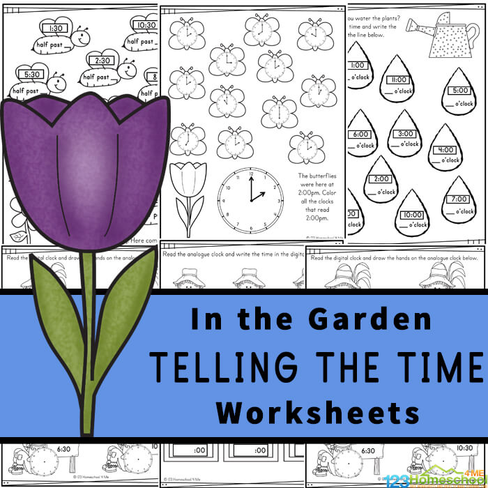 Introduce children in pre-k, preschool, kindergarten, first grade, and 2nd grade to learning to read a clock with these fun Garden themed Telling the Time Worksheets. Concentrating on learning the o'clock and half-past times, these worksheets are a great way to introduce time and reading a clock to your children. Simply download pdf file withclock worksheets and you are ready for fun, free math worksheets with a fun flower theme.