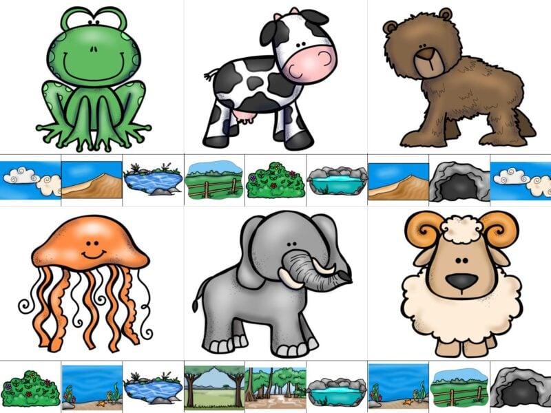 Animal Homes for Kids