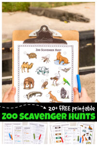 Spring is the time for field trips to the local zoo. In an attempt to make our homeschool field trips extra fun (and educational) I created these super cute, zoo scavenger hunttemplates. We have lots of choices with these zoo scavenger hunt printable pack to accomidate kids of all ages from toddler, preschool, pre-k, kindergarten to elementary age students in first grade, 2nd grade, 3rd grade, 4th grade, 5th grade, and 6th grade students. Whether you use the simple animal scavenger hunt or learn about endagered animals or animal habitats in one of these zoo scavenger hunt ideas - kids will have fun learning about zoology in science. Simply download free printable scavenger hunt pdf file and you are ready to learn about animals with thisprintable scavenger hunt at your local zoo.