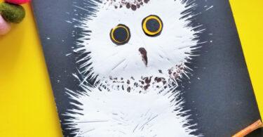 snowy baby owl