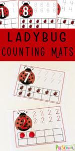Ladybug-Counting-Mats