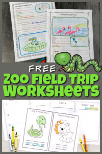 Here is a fun way to turn a trip to the zoo into a fun, educationalsceincefield trip! These zoo field trip worksheet will help your kids to explore the zoo more in-depth. We've included zoo animals worksheet for first grade, 2nd grade, 3rd grade, 4th grade, 5th grade, and 6th grade students. Plus preschool zoo activities including zoo coloring pagesperfect for toddler, preschool, and pre-k students. Finally create an animal report where kindergarten and elementary age students can draw animals they see and write down interesting information too. Simply print pdf file with zoo animal printables and you are ready to play and learn!