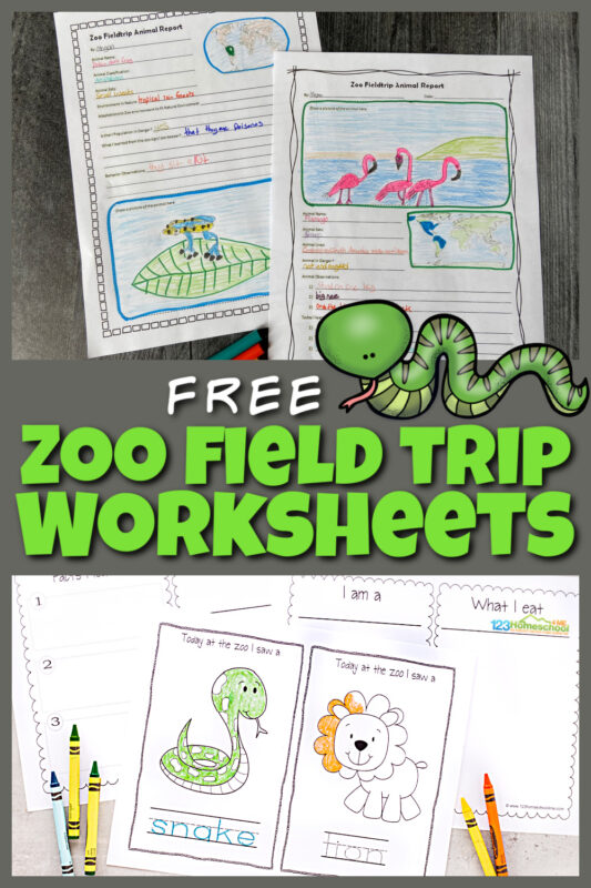 Here is a fun way to turn a trip to the zoo into a fun, educationalsceincefield trip! These zoo field trip worksheet will help your kids to explore the zoo more in-depth. We've included zoo animals worksheet for first grade, 2nd grade, 3rd grade, 4th grade, 5th grade, and 6th grade students. Plus zoo field trip activitiesincluding zoo coloring pagesperfect for toddler, preschool, and pre-k students. Finally create an animal report where kindergarten and elementary age students can draw animals they see and write down interesting information too. Simply print pdf file with zoo animal printables and you are ready to play and learn!