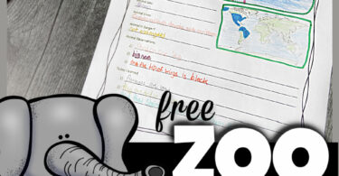 Zoo field trip worksheets to explore the zoo and learn about animals for kids! Zoo animals worksheet pages plus zoo coloring pages for young kids too!