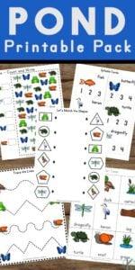 pond worksheets