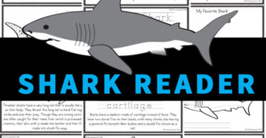 Learn about amazing, feared Sharks for kids with this free shark printables reader. Children from preschool, pre-k, kindergarten, first grade, 2nd grade, 3rd grade, 4th grade, and 5th grade students will love learning about these large creatures whose skin resembles sandpaper while reading through this reader, learning about a variety of different breeds of sharks. Use this for shark theme, ocean theme, or shark activity to learn more about these amazing ocean animals! Simply download pdf file with sharks worksheets to make into a shark book for kids to read, color, and learn all about sharks!